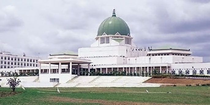 NASS wants local content policy extended to building and construction