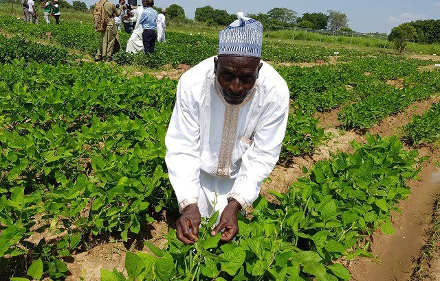 As Election 2018 Draw Nearer; Farmers Threaten Not Producing