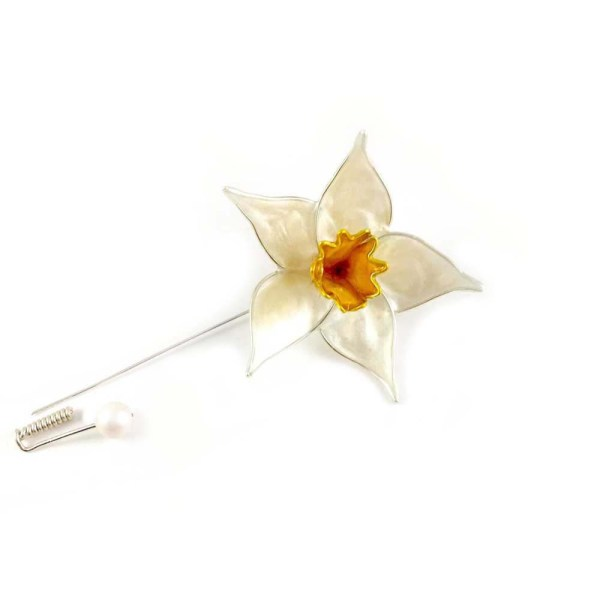 White and yellow daffodil