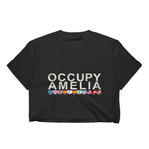 Occupy Amelia Cropped T-Shirt Black