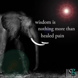 Wisdom-is-nothing-more-than-300x300