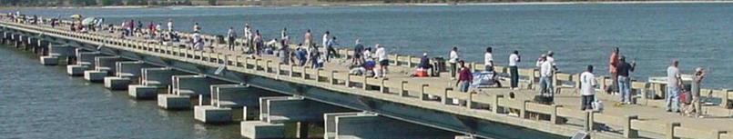 Crady Bridge3