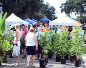 Fernandina Farmer's Market, Amelia Island, Florida