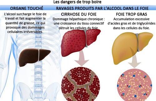 Les effets de l'alcool dans le corps