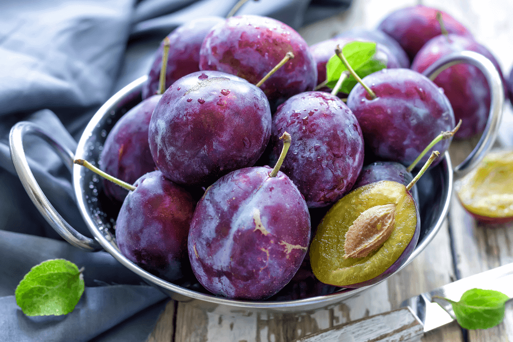 "The Benefits of Plums ""width ="" 1000 ""height ="" 667 "" data-recalc-dims="