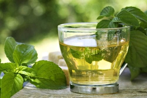"""infusion of tea and mint to lose weight """"width ="""" 500 """"height ="""" 333 """" data-recalc-dims="""