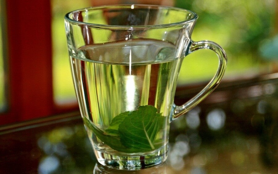 Infusion of basil
