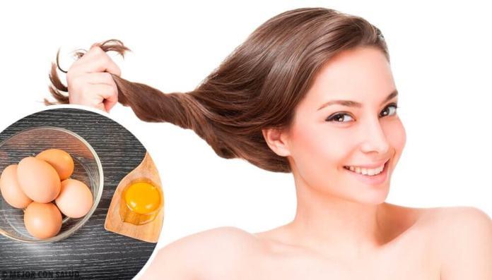 oeufs pour les cheveux