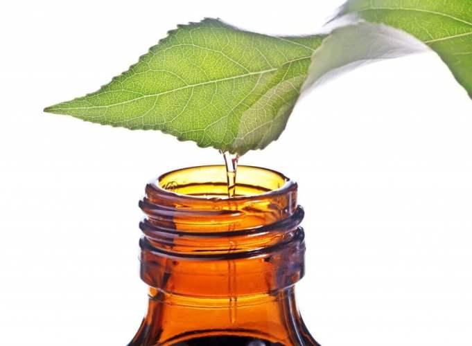 avantages de l'huile de menthe