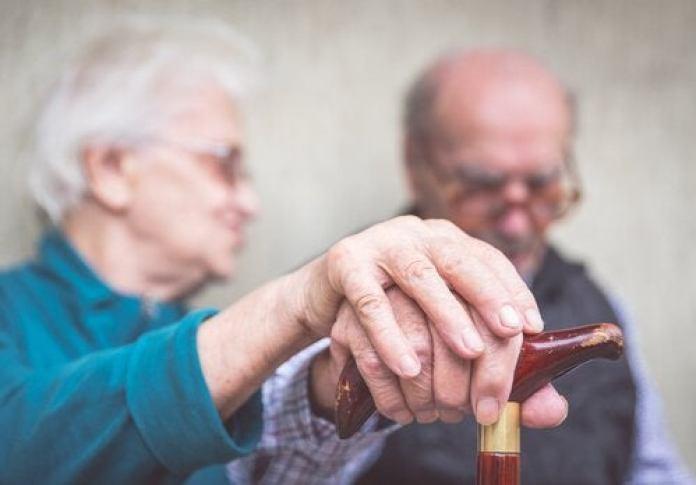 le fenugrec pour prévenir la maladie d'Alzheimer