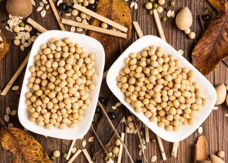 Deux assiettes de graines de soja