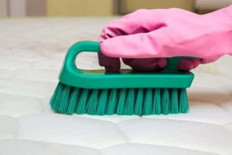 Une personne faisant le ménage.