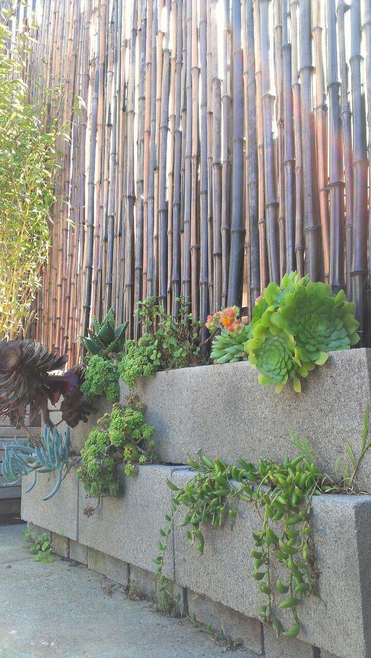 Faire Une Palissade En Bambou : faire, palissade, bambou, Idées, Clôtures, Originales, Réaliser, Soi-même
