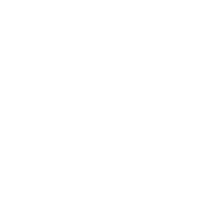 Pelle mécanique