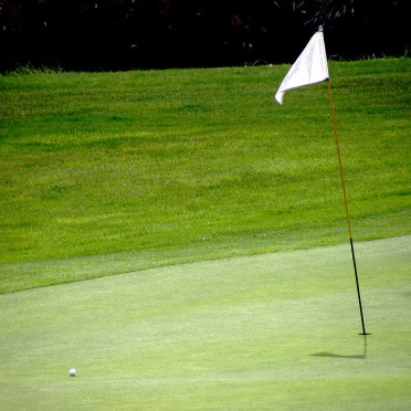 gazon terrain golf
