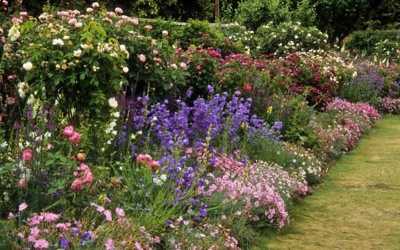 aménagement de jardin anglais