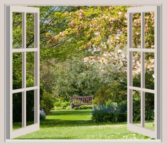 fenêtre avec vue sur un bel aménagement de jardin