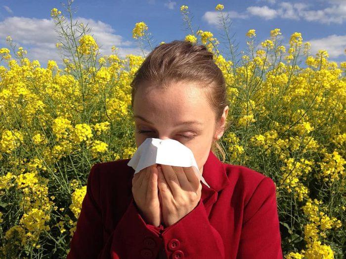 nez qui coule personne allergique au pollen