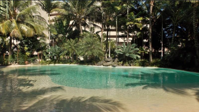 aménagement de piscine avec des palmiers pour cacher la vue