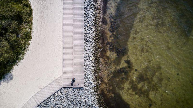 lames de bois grisées au bord de la mer