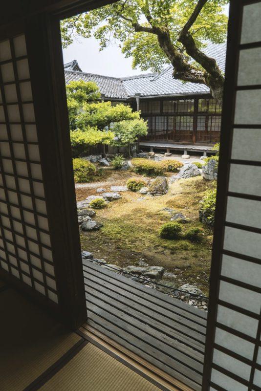 jardin japonais dans un patio