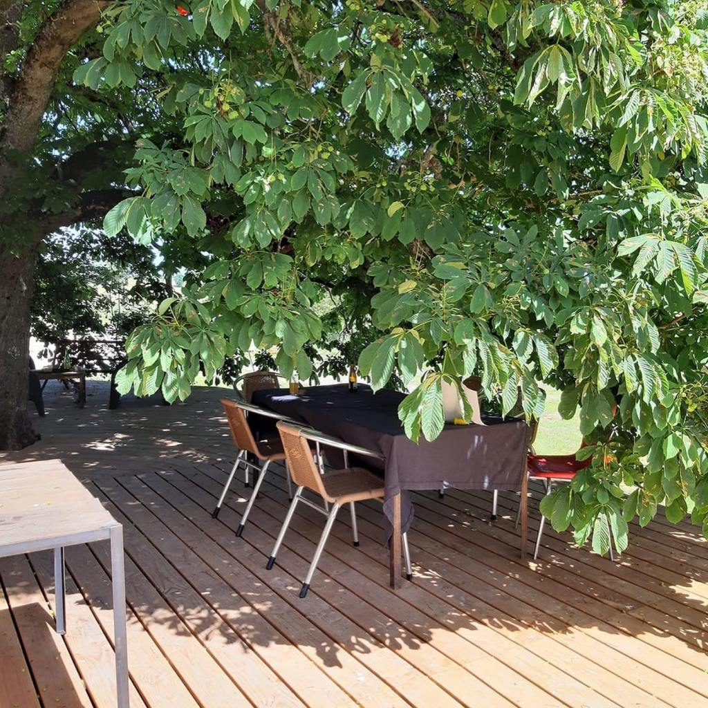 terrasse douglas locale sous un arbre