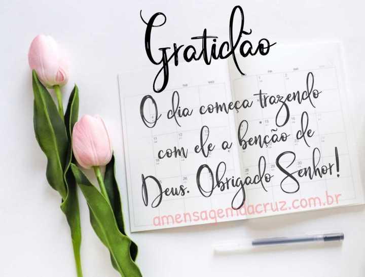 Gratidão pelo dia que começa e com ele a benção de Deus