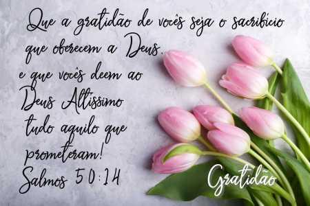 Mensagem biblica sobre gratidão