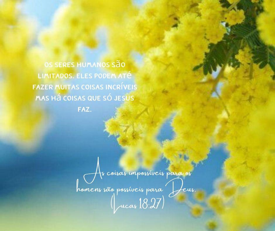 Versículo do Dia - Nada é impossível para Deus