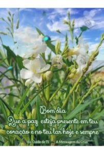 A paz do Senhor Jesus na Tua Vida - Mensagem de Bom Dia