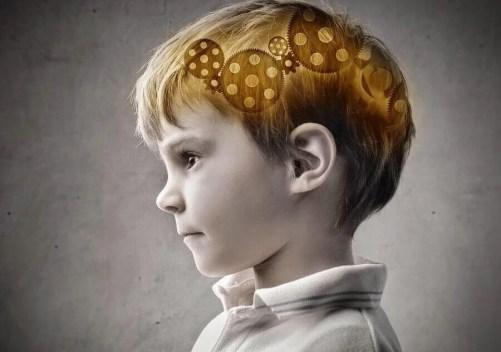cerebro-crianca