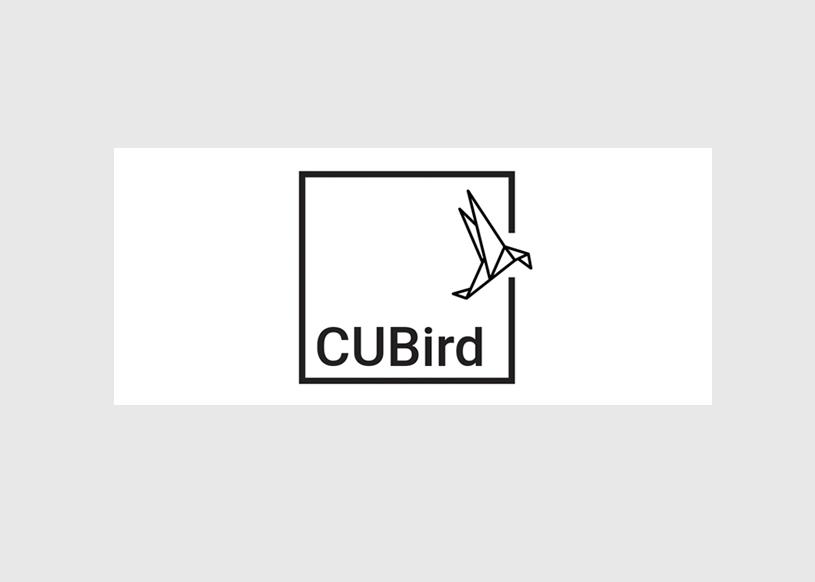 Cubird studio