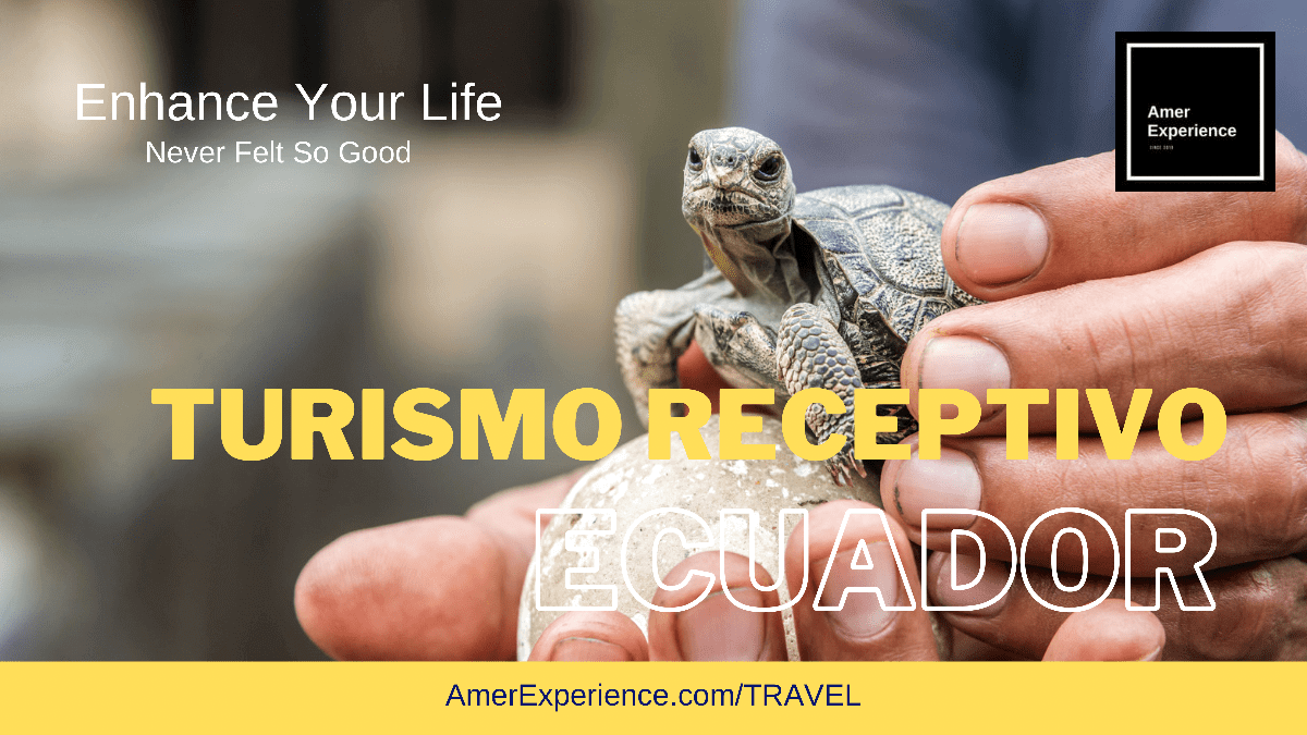 Turismo Receptivo Ecuador Incoming Travel DMC Baby Galapagos Tortoise