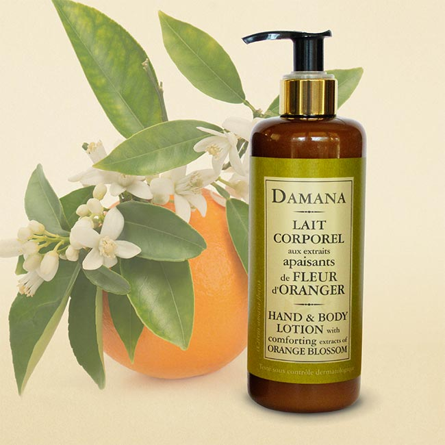 https://america-galindez.com/shop/hospitality/organic-collection/hand-body-lotion-enhanced-with-extracts-of-orange-blossom/