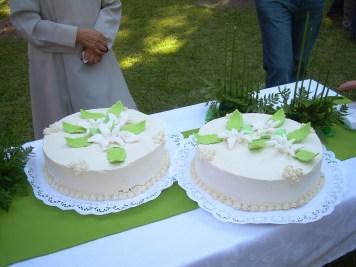 bodas de plata 109