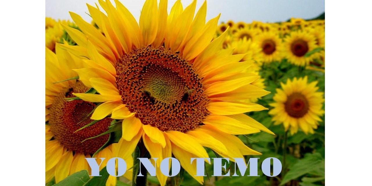 DOMINGO 33 DEL TIEMPO ORDINARIO, CICLO B