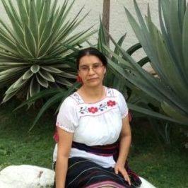Norma Pérez, Santiago-Chile