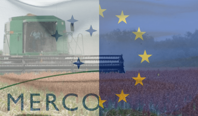 Los perdedores de siempre: apuntes sobre el acuerdo Mercosur-UE