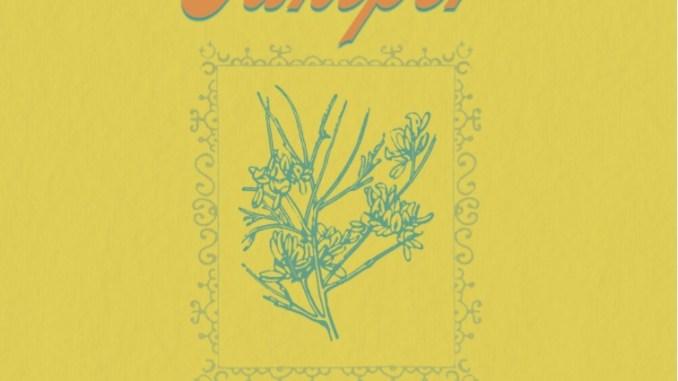 artwork for Breanne Marie album Juniper
