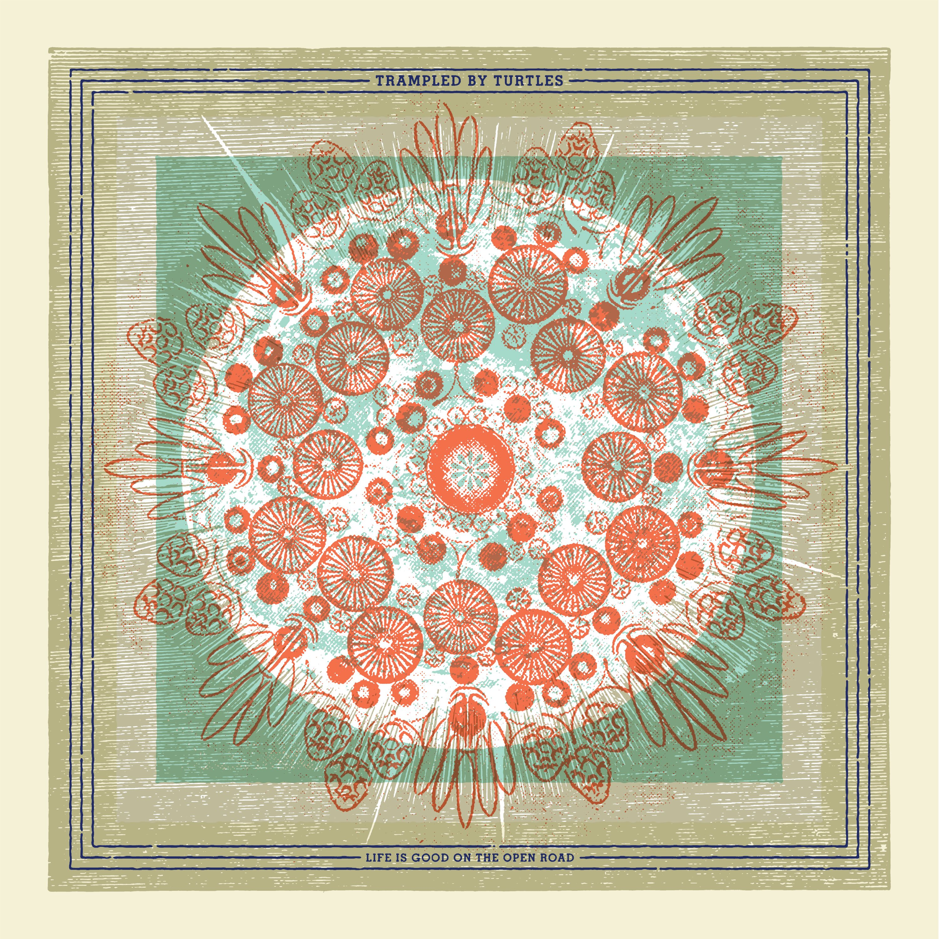 REVIEW: Trampled by Turtles'