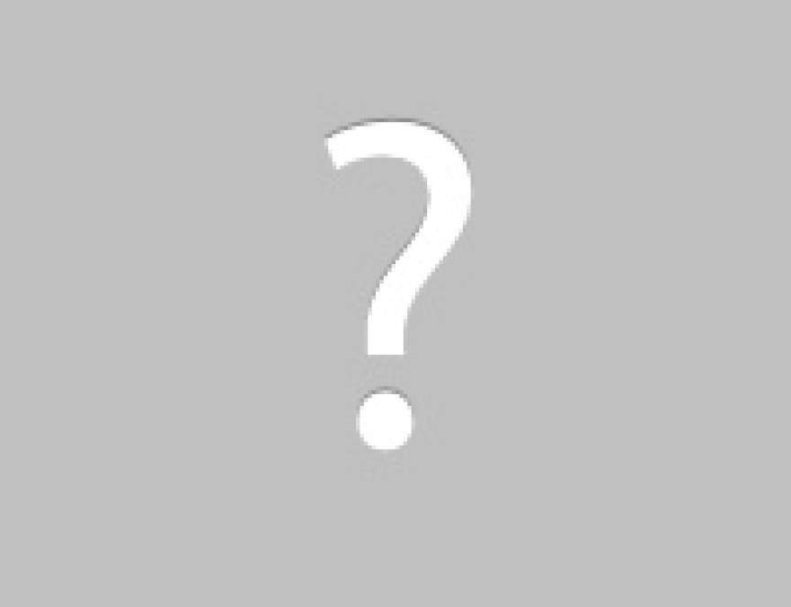 Squirrel damage to attic vent-picture