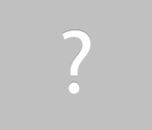 Michigan City Raccoon Removal Service baby raccoons