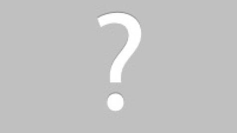 beaver removal damage control