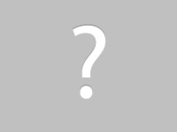 Woodpecker deterrent & damage repair