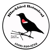 blackbirdbotanical