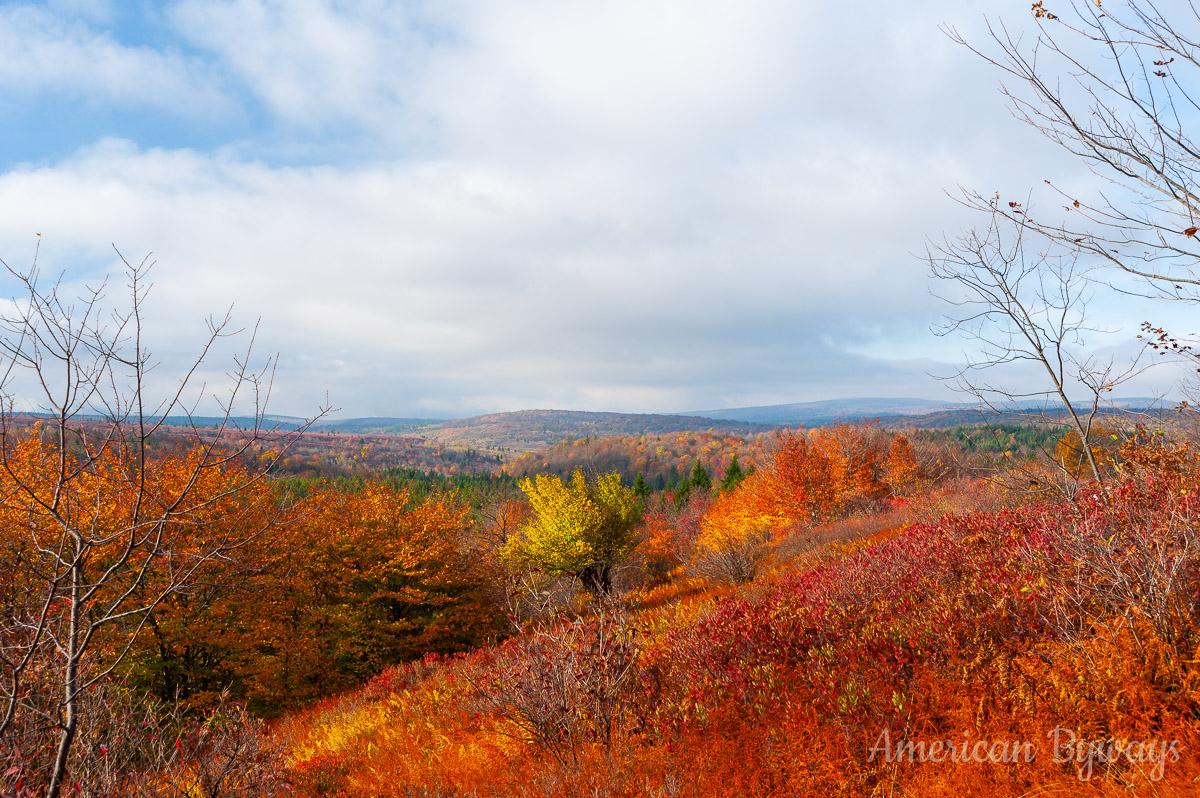 Along the Bear Rocks Trail (No. 522)