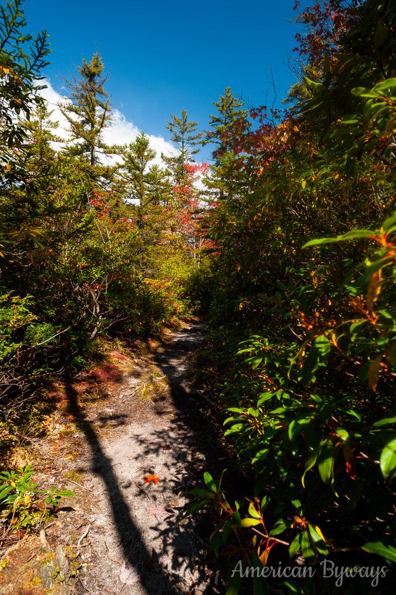 Dunkenbarger Trail (TR 588)