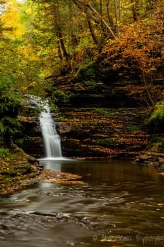 Shequaga Creek Falls