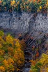Taughannock Creek Canyon