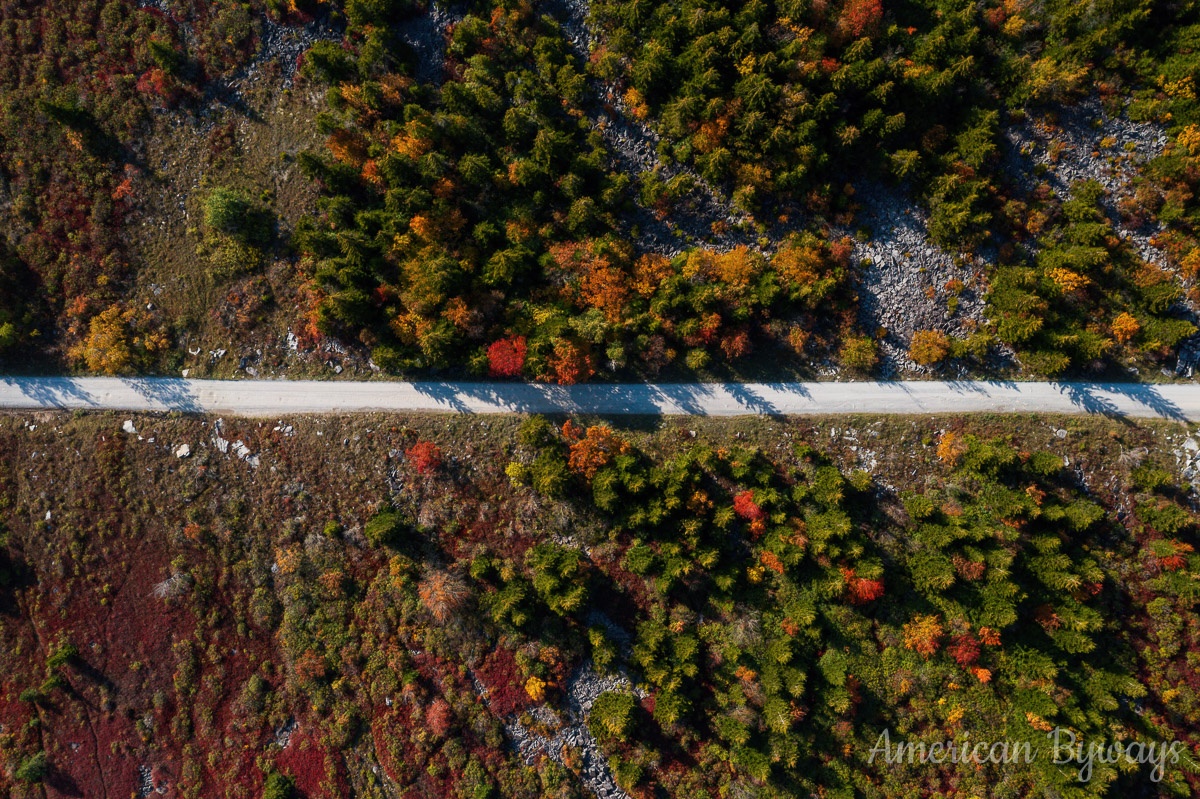 Dolly Sods Forest Road 75